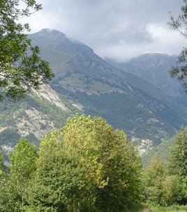 N 33 mountainbike itinerary  : La plaine du Périer - blue path
