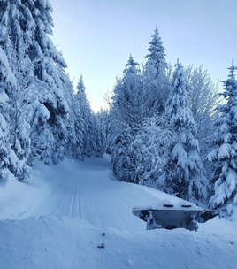 NEW - Cross country skiing area