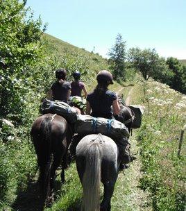 Terres d'alpages en Matheysine - 8 jours