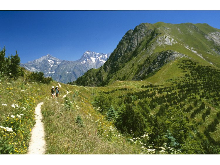 Photo 3 Découverte des vallées verdoyantes du Valbonnais