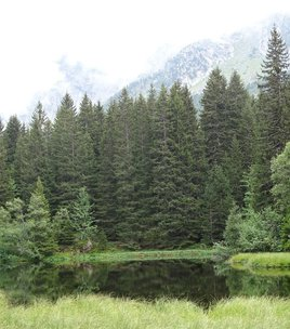 Lac Punay